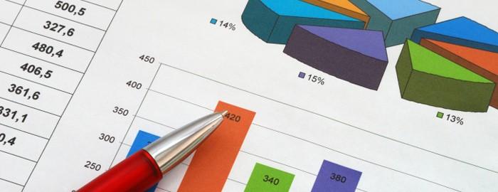 ngo annual budget chart